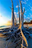 Lovers Key State Park, Lee County, Florida