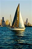 Sailboat in a lake, Lake Michigan, Chicago, Cook County, Illinois, USA