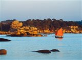 Traditional sailing boat in an ocean, Cotes-d'Armor, Brittany, France