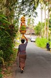 Woman carrying offering to temple, Pejeng Kaja, Tampaksiring, Bali, Indonesia