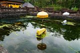 Covered stones with umbrella in ritual pool at holy spring temple, Tirta Empul Temple, Tampaksiring, Bali, Indonesia