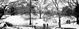 High angle view of a group of people in a park, Central Park, Manhattan, New York