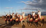 Berber Horsemen, Dades Valley, Morocco