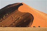Sand Dune, Namib Desert, Namib-Naukluft National Park