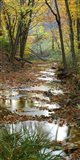 Autumn at Schuster Hollow in Grant County, Wisconsin