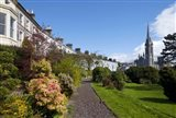 St Coleman's Cathedral Beyond, County Cork, Ireland