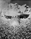 1950s 1960s Atomic Bomb Symbolic Montage