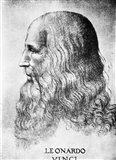 Self Portrait Of Leonardo Da Vinci Circa 1512