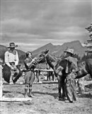 1930s Cowboys & A Woman Grooming A Horse