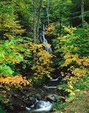 Moss Glen Falls, Granville Reservation State Park, Vermont
