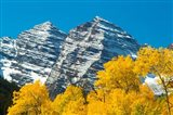 Trees with Mountain Range in the Background, Maroon Creek Valley, Aspen, Colorado