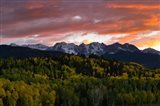 Trees with Mountain Range at dusk, Aspen, Colorado