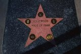 Hollywood Walk of Fame Star, Los Angeles, CA