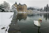 Chateau de Vizille, Swan lake, France