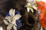 Close-up of flowers in a bride's hair, Bainbridge Island, Washington State, USA