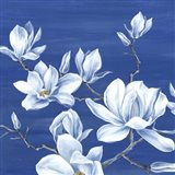 Blooming Magnolias I