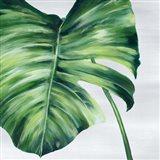Tropical Leaf II