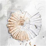 Blush Shell II