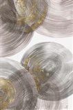 Spiral Rings I