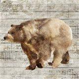 Crossing Bear II