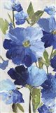 Cobalt Poppies II