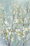 Teal Almond Blossoms