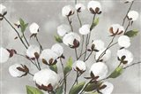 Cotton Ball Flowers I