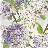 Summer Hydrangea I