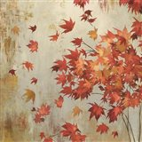 Crimson Foliage