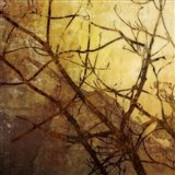 Ombre Branches I