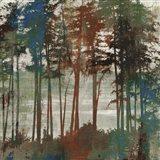 Spruce Woods I