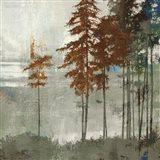 Spruce Woods II