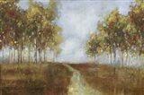 Dream Meadow I