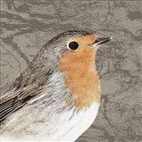 Feathered V