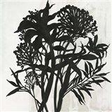 Black Foliage