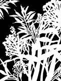 Monochrome Foliage IV