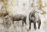 Equestrian Gold II
