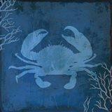 Navy Sea Crab