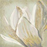 Fresh Bloom II