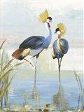 Heron Pairing