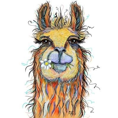 Llama with Daisy Poster by Karrie Evenson for $46.25 CAD