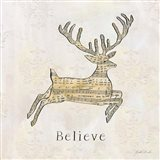 Vintage Christmas Believe