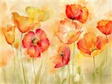 Watercolor Poppy Meadow Spice Landscape