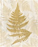 Golden Fern I