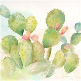 Cactus Garden I