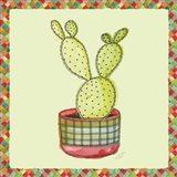 Rainbow Cactus IV