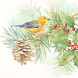 Winter Birds I Warbler