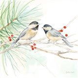 Winter Birds II Chickadees