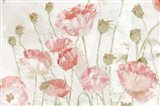 Poppies in the Wind Blush Landscape