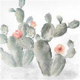 Cactus Garden Gray Blush III